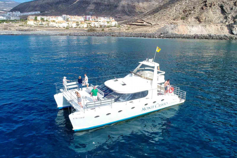 3-hours-dolphin-tour-monte-cristo-tenerife